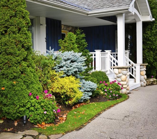 Cung cấp cỏ nhân tạo trang trí nội thất