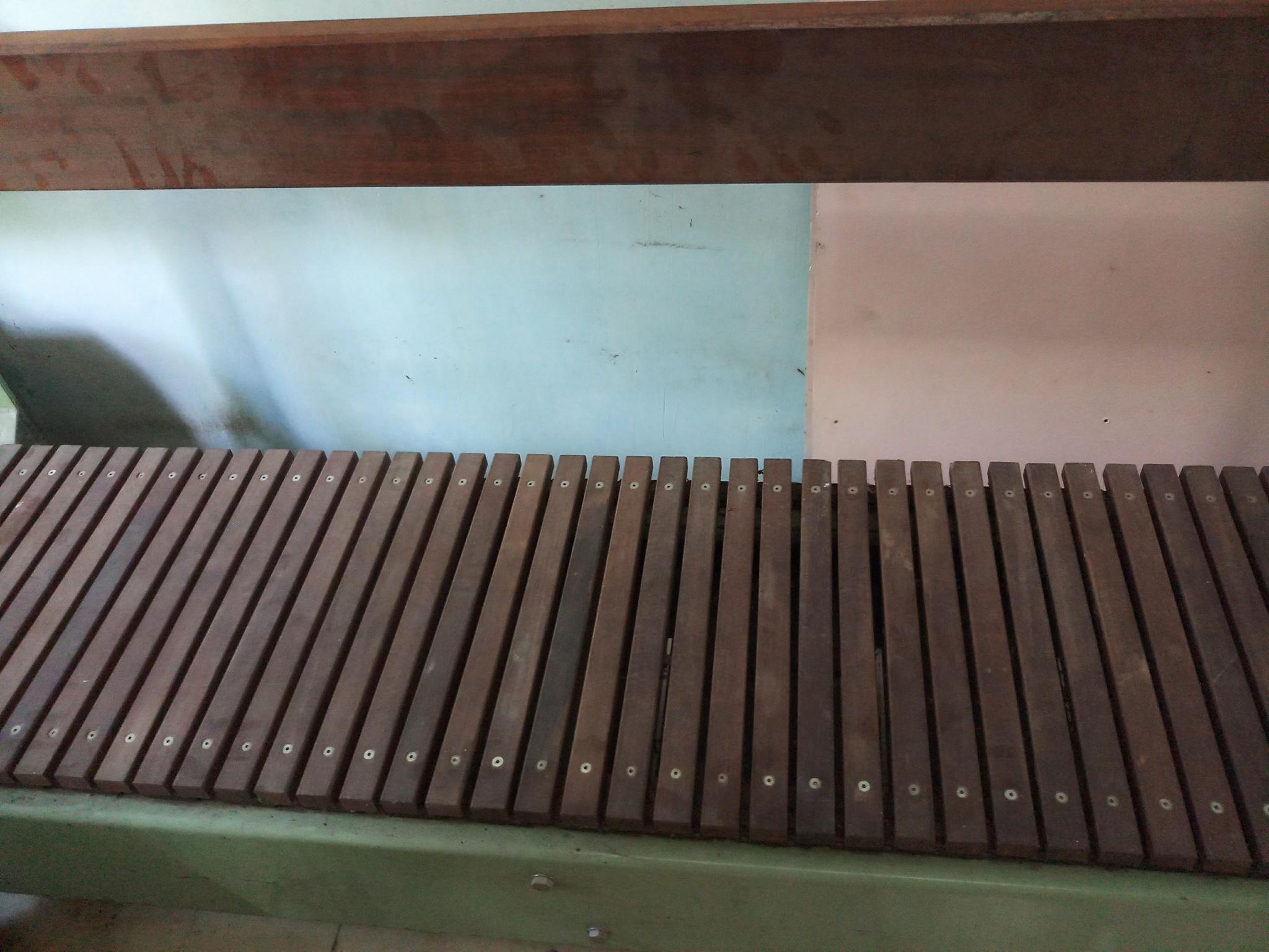 Băng tải gỗ thái lan