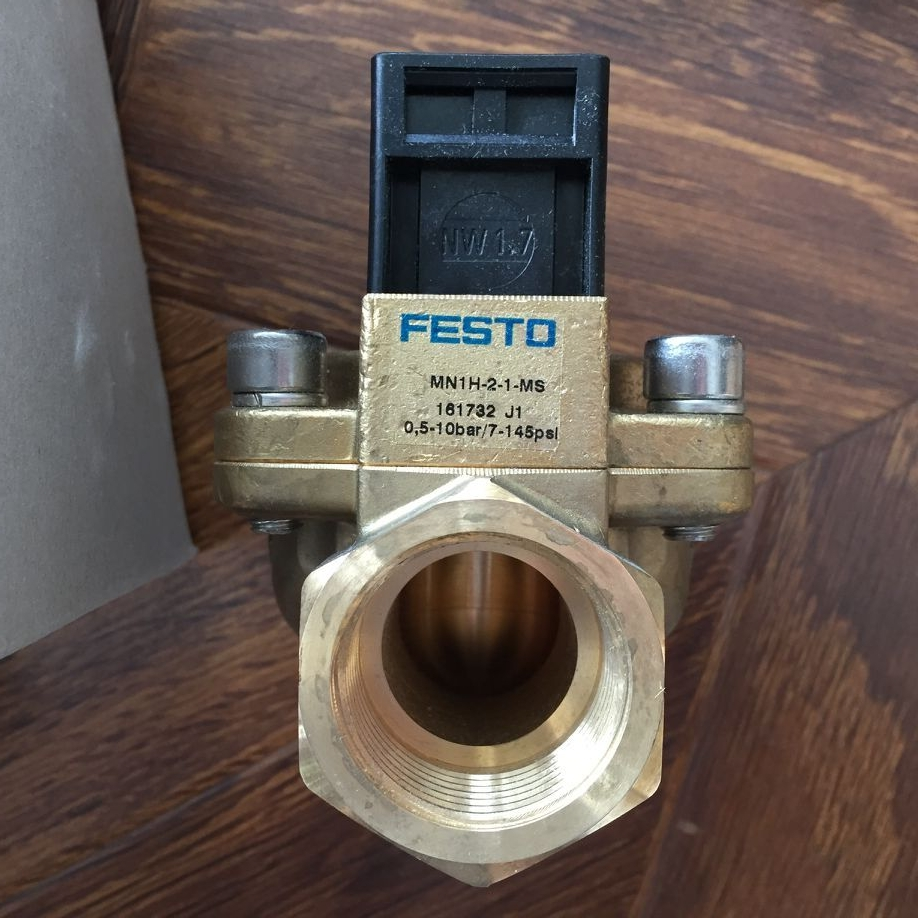 Van FESTO MN1H-2-1-MS 161732