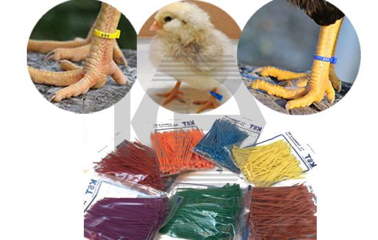 Dây rút nhựa màu đánh dấu gia cầm, hàng hóa