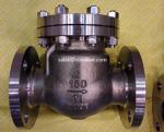 Titanium Ansi Swing check valve