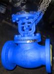 Ansi bellows seal globe valve,300LB,RF,DN150