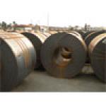 Thép tấm/ cuộn cán nóng SS400/Q345B/ASTM A572 Grade 50