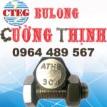 Bulong inox 304