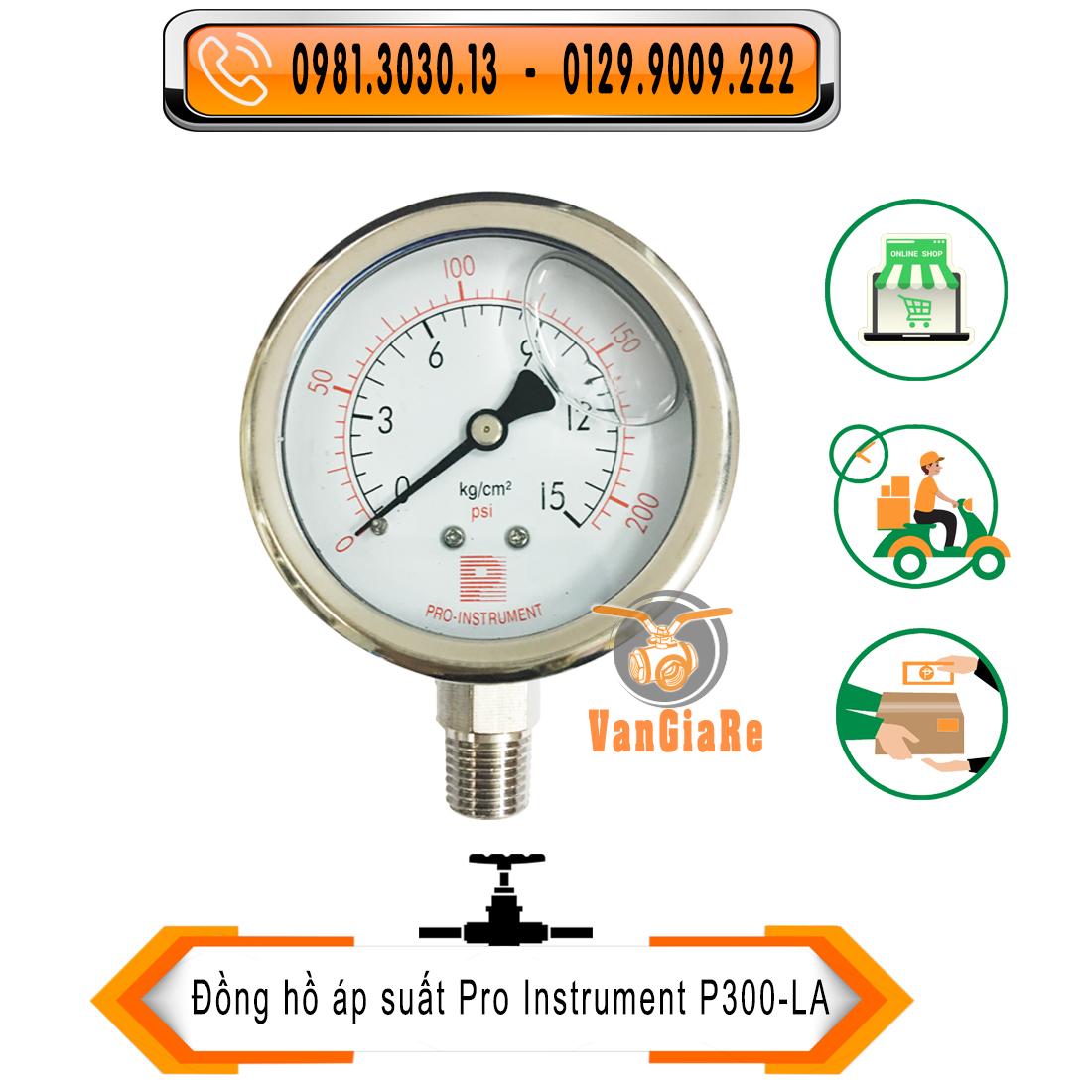 Đồng hồ áp suất có dầu hiệu P (Pro-Instrument)