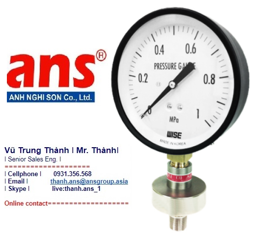 Đồng hồ đo áp suất P170 Wise Vietnam