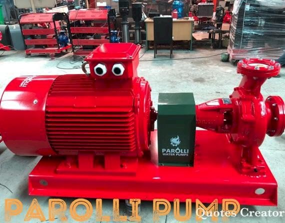 Máy bơm Điện 150HP Parolli PS 100-500/1100 - Trục rời
