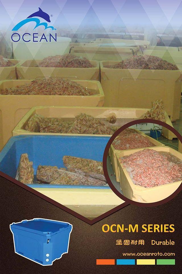Vinasea - nhà cung cấp Thùng nhựa cách nhiệt Malaysia hàng đầu tại Việt Nam