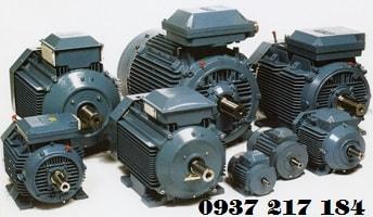 Sửa motor máy bơm chữa cháy Pentax điện 3 pha - 380V