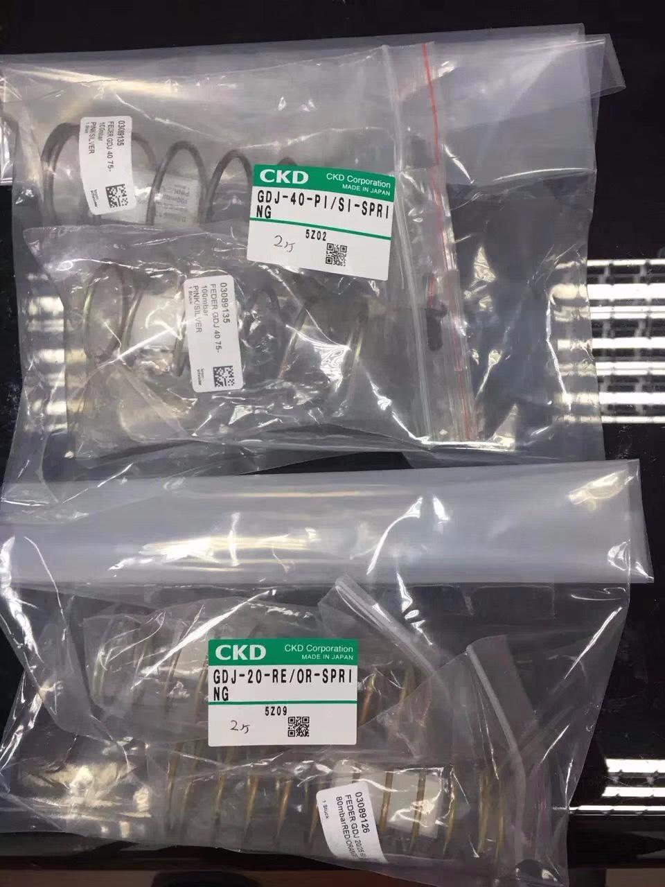CKD GDJ-40-P1/S1-SPR1-NG