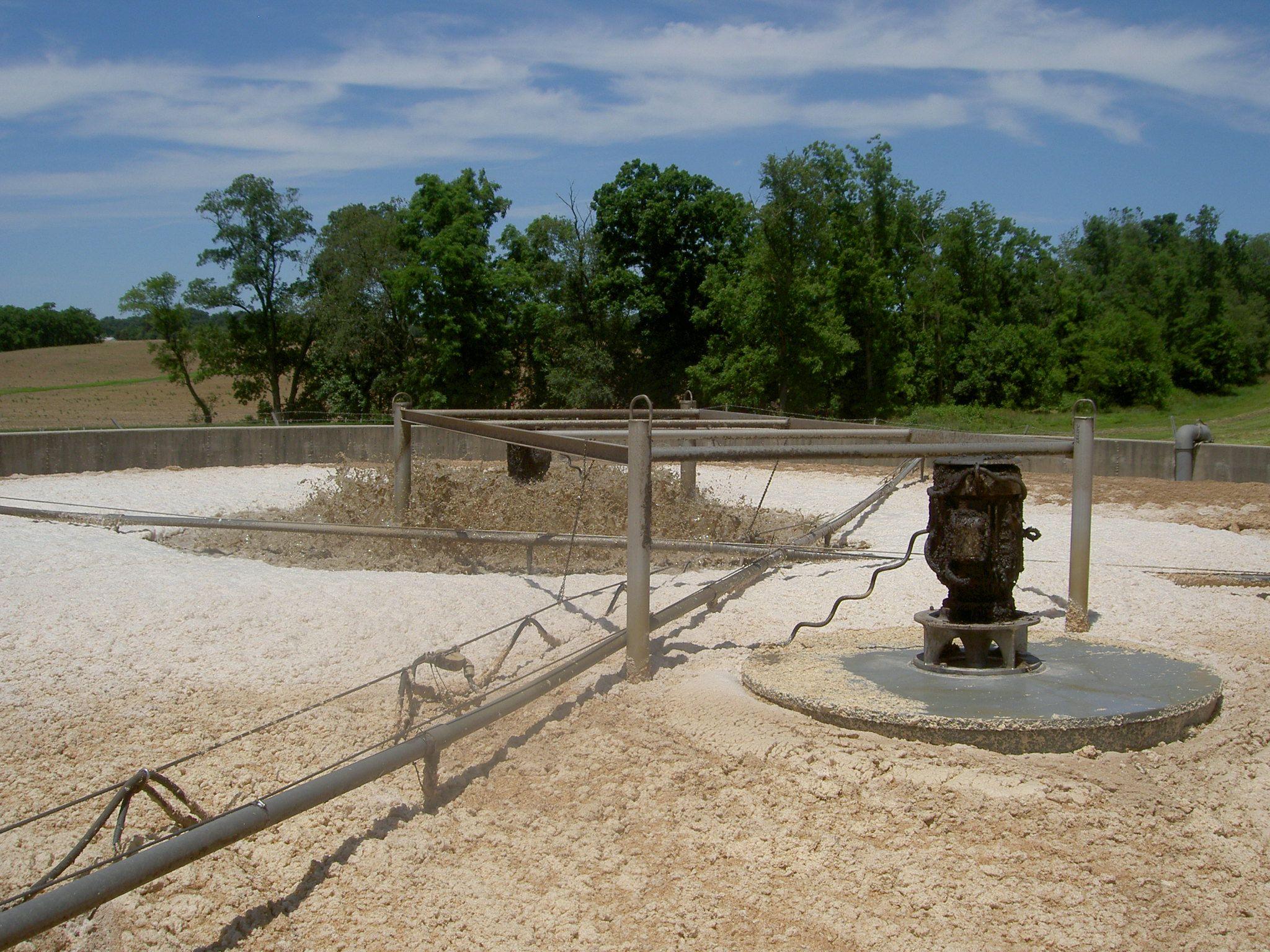 Nuôi cấy, cung cấp bùn vi sinh chất lượng tại Củ Chi