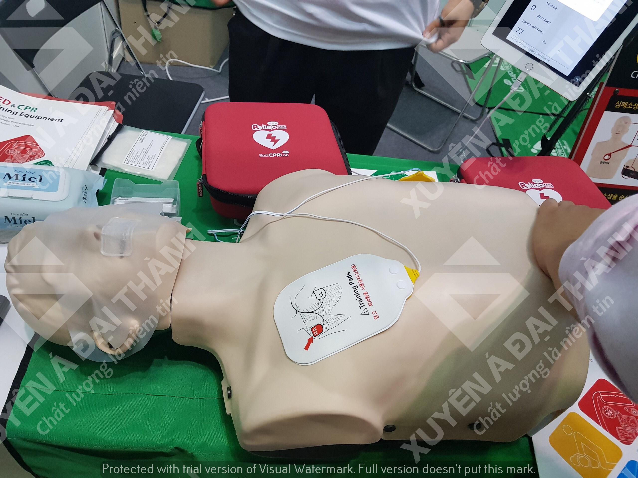 Mô hình hồi sức cấp cứu (Mô hình thực tập hô hấp)