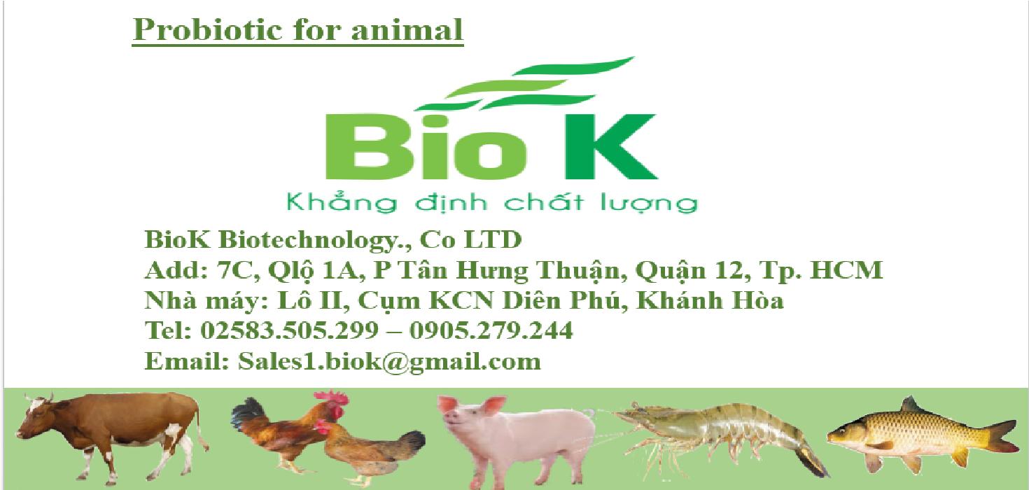 Cần tìm đại lý phân phối men vi sinh nguyên liệu hàng công ty BioK