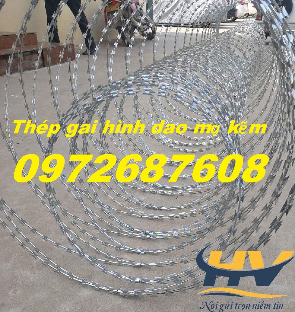 Dây thép gai hình lưới dao được mạ kẽm làm hàng rào chống trộm