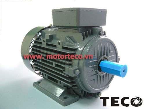 Động cơ Teco AESV1S 4P 1HP