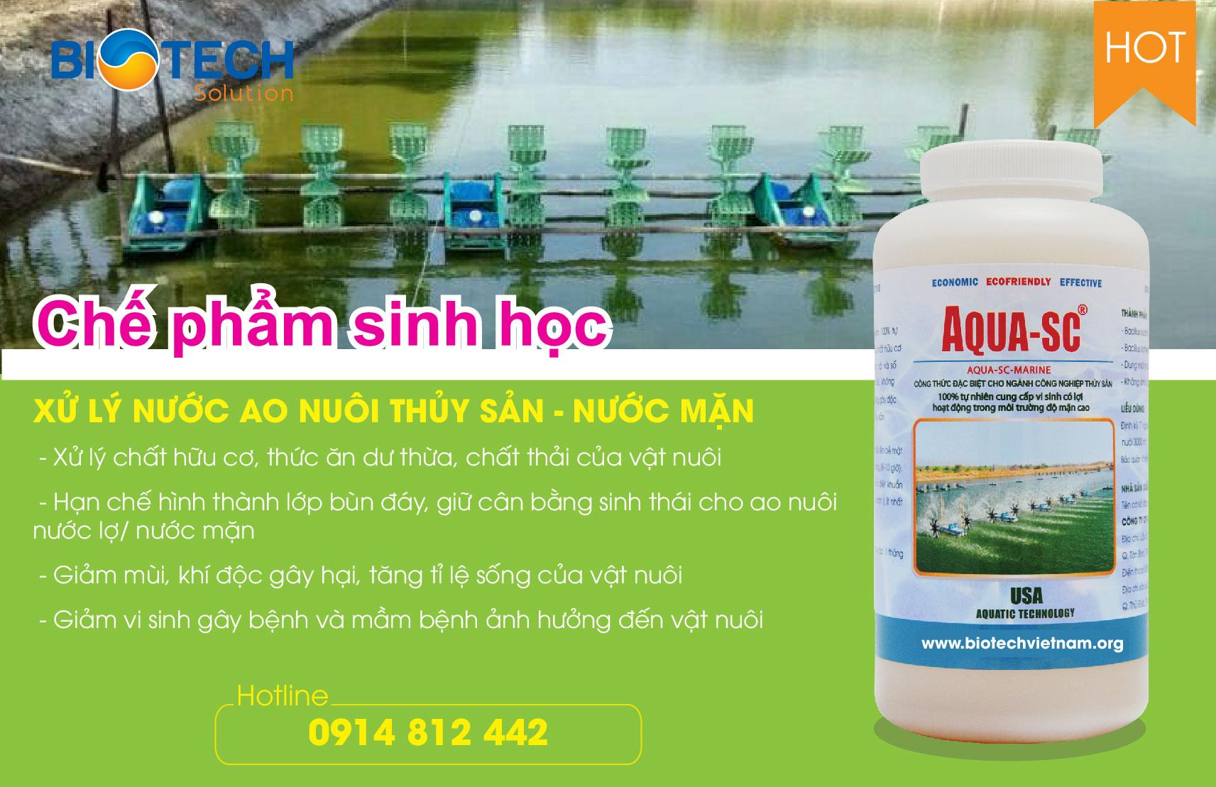 AQUA-SC-MARINE - Vi sinh xử lý nước ao nuôi thủy sản - nước mặn
