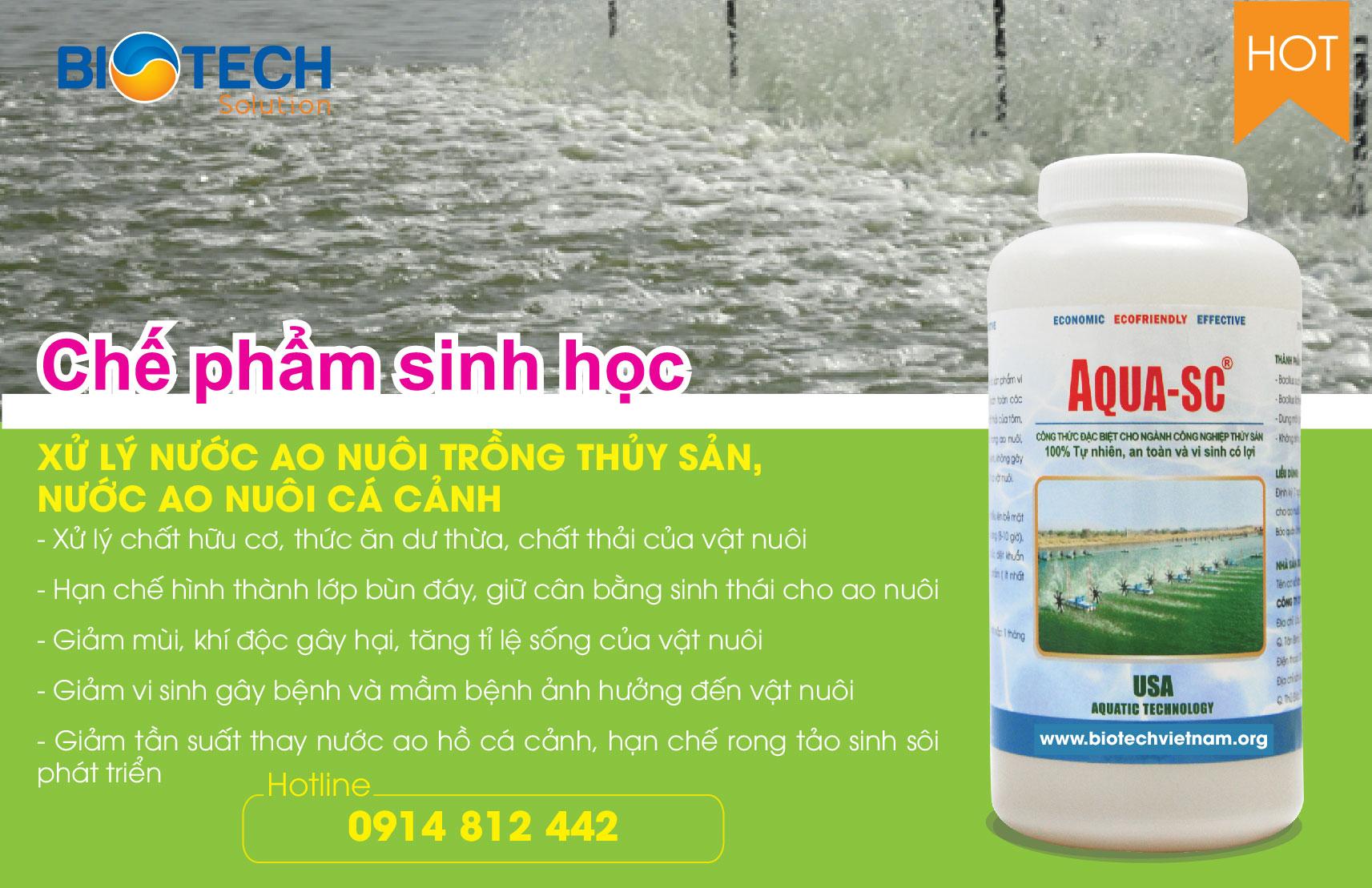 AQUA-SC - Vi sinh xử lý nước ao nuôi trồng thủy sản, nước ao nuôi cá cảnh