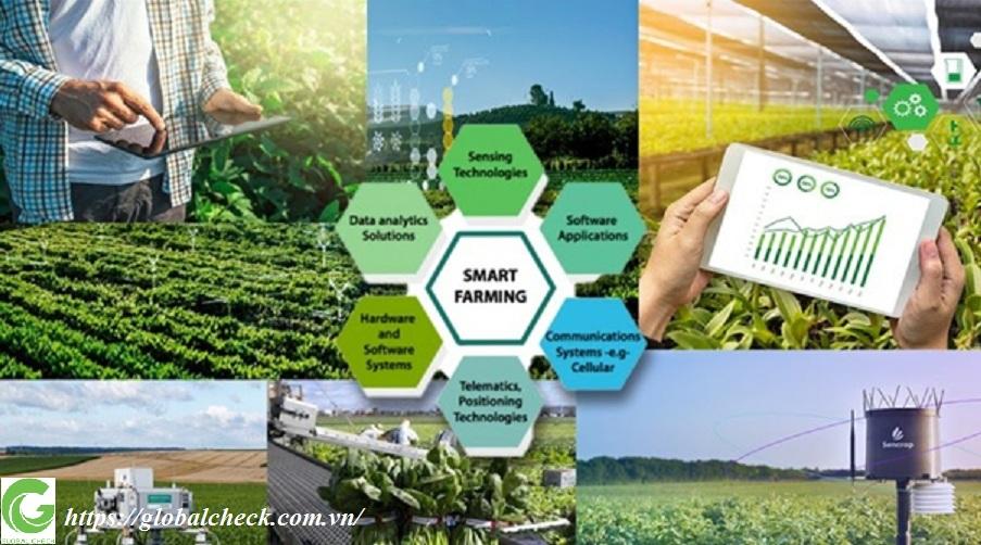 Mô hình nông nghiệp thông minh