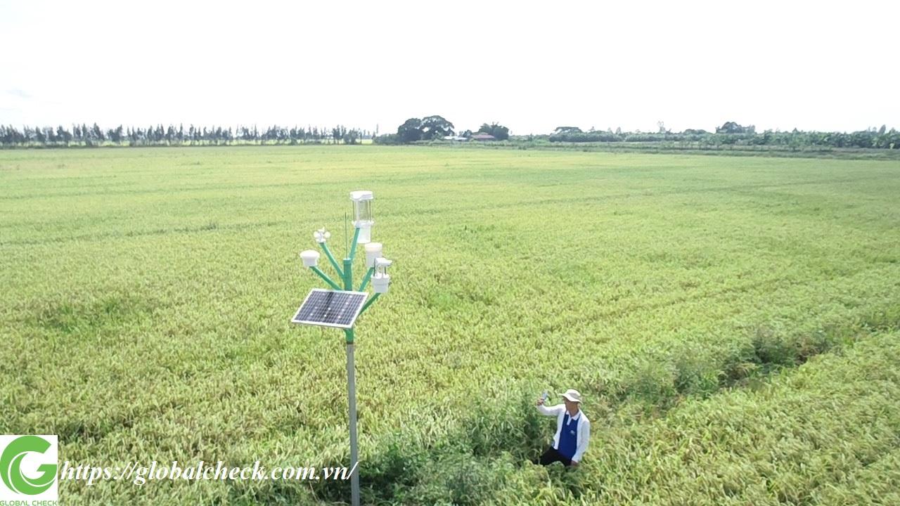 Trạm giám sát nông nghiệp thông minh bao gồm những gì