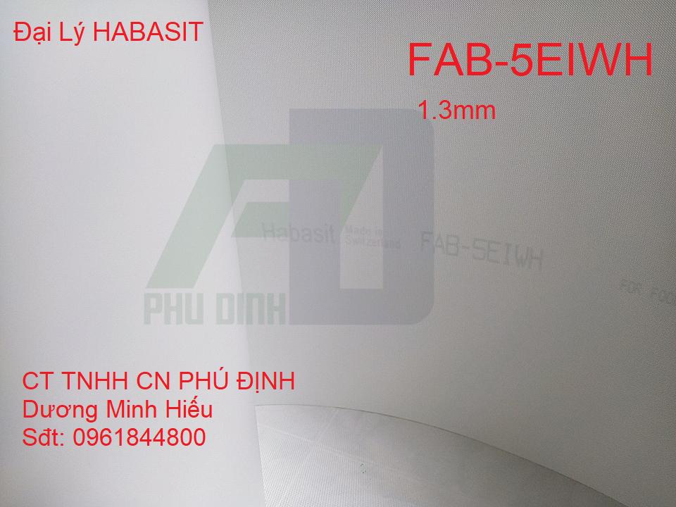 Băng tải FAB-5EIWH Habasit