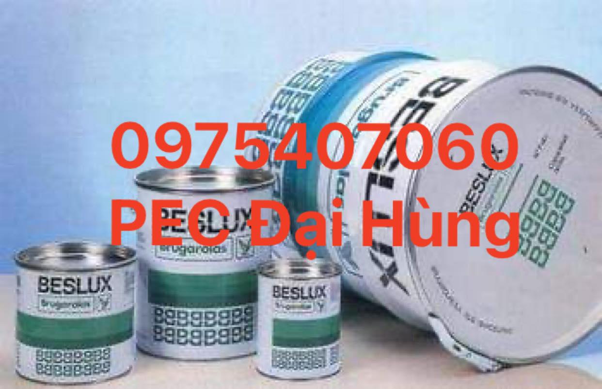 Mỡ tốc độ cao Brugarolas G.Beslux Plex L -2/S
