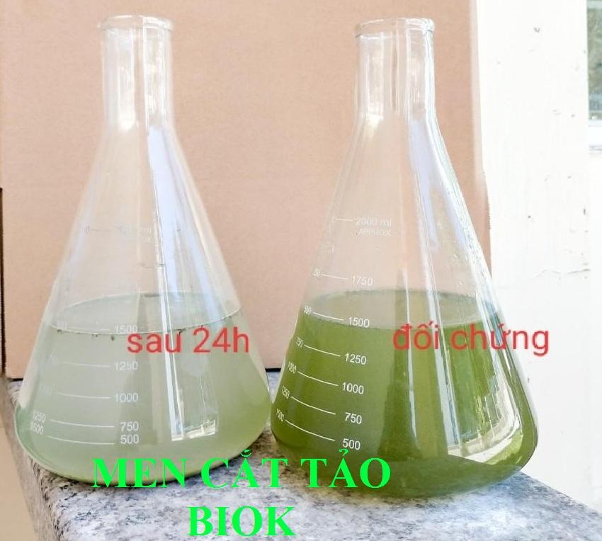 Men vi sinh, men cắt tảo, nguyên liệu giá nhà máy.