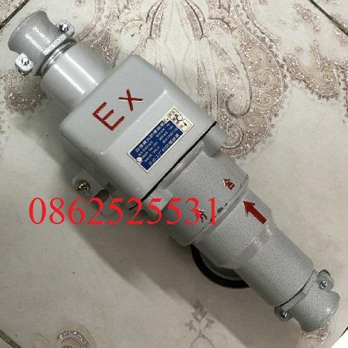 phích cắm chống nổ BCX53-30/X