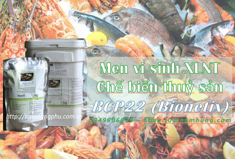 Men vi sinh xử lý nước thải thuỷ sản BCP22 (Bionetix)