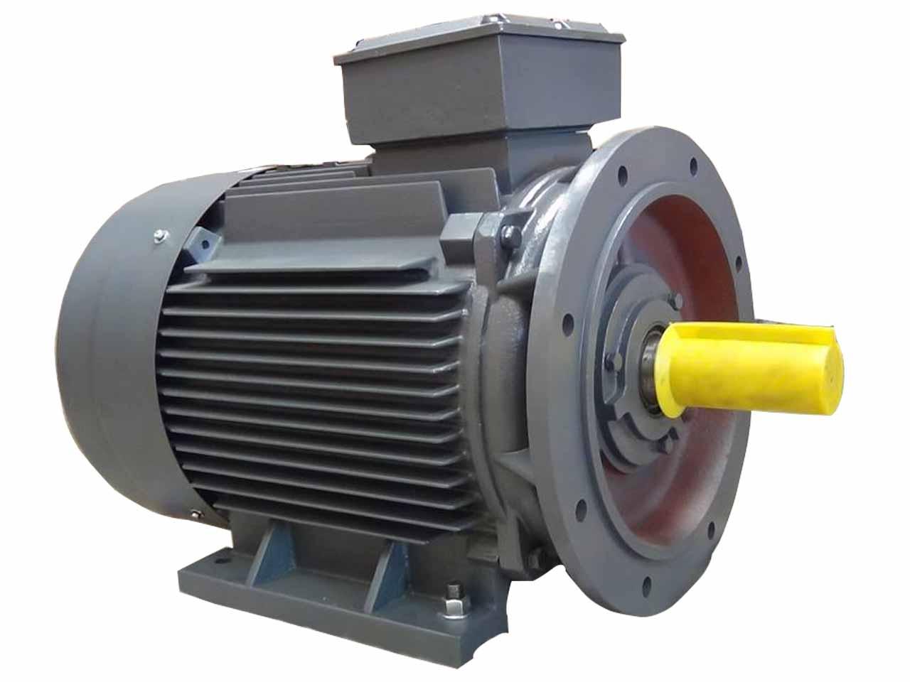 Motor điện 75kw mặt bích chân đế 3 pha