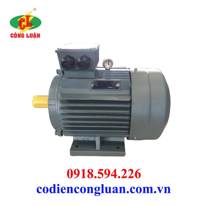 Motor-động cơ điện 75kw chân đế 3 pha