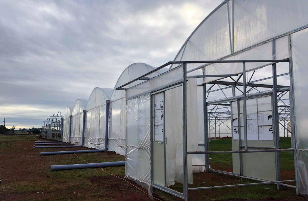 Công ty thiết kế nhà kính nông nghiệp politiv israel,công ty thi công nhà kính nhà màng