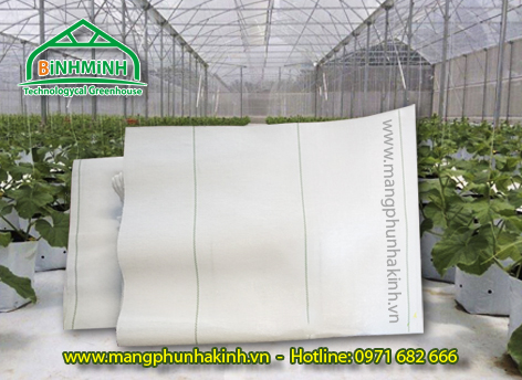 Bạt trải nền nhà kính trồng dưa lưới, bạt trải nền loại dày, bạt phủ đất nông nghiệp