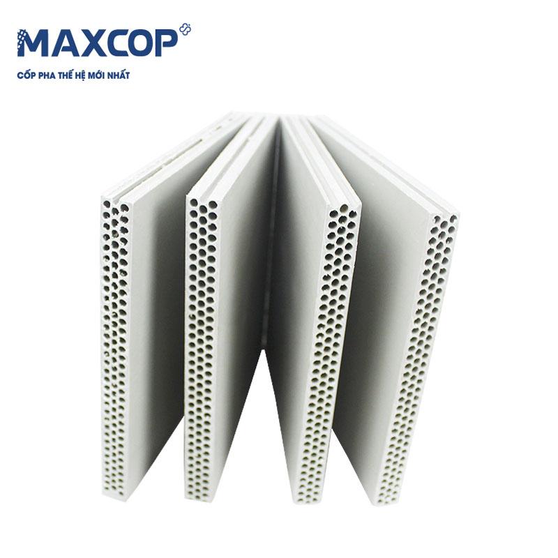 Cốp pha nhựa Maxcop lỗ tròn - kích thước 1220x2440mm x18mm