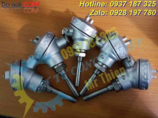 Cặp nhiệt Pt100, dài 550mm, phi 6mm, ren G1/2 , Thermomatrix Vietnam ,