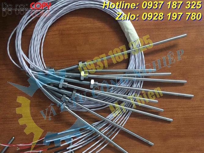 Nhiệt điện trở Pt100, Thermomatrix , 100 độ C, 140mm,phi 6mm,ren G1/2,