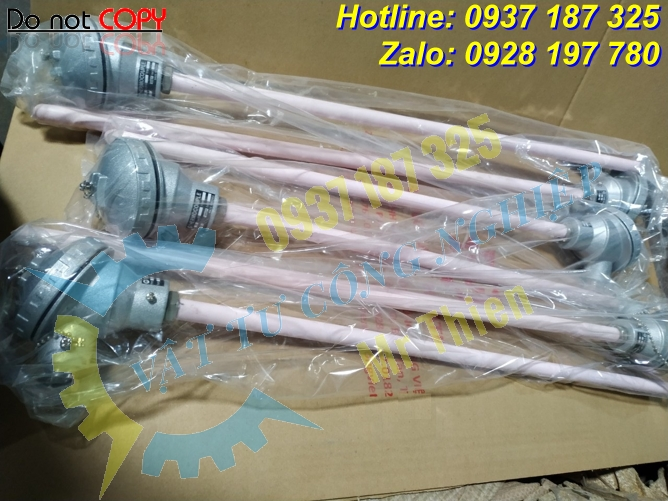 Thermomatrix , Thermocouple type K , 1200 độ C 900mm phi 17mm, ren G1,