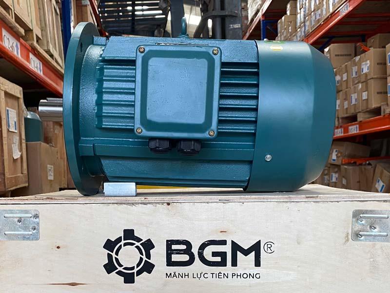 Động cơ điện , Motor điện BGM Việt Nam