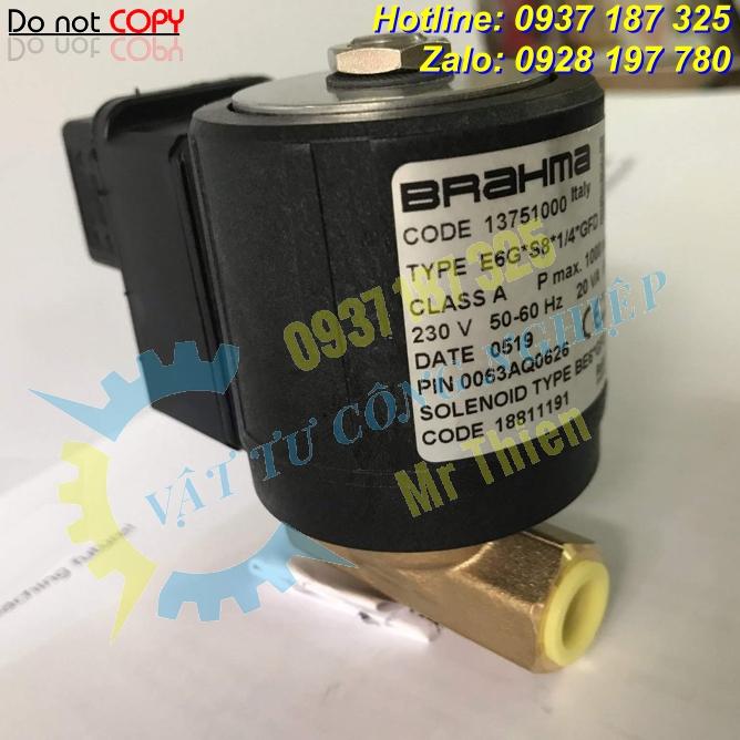 E6G*S8*1/4*GFD , 13751000 , Van điện từ , Brahma Vietnam ,