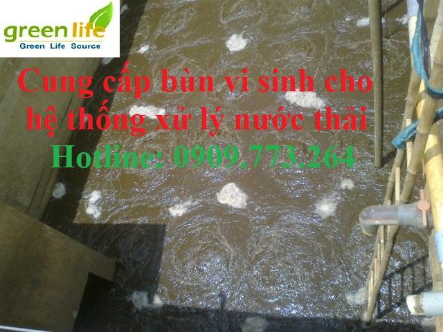Bán bùn vi sinh giá rẻ tại TpHCM
