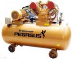 Nhà  sản xuất máy nén khí Pegasus